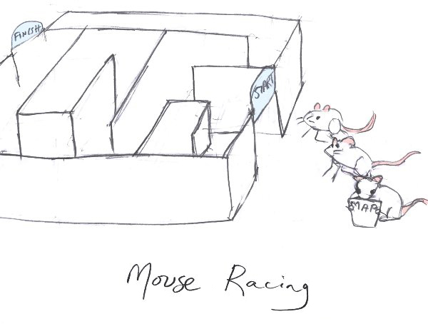 Mouse Racing – 6:30pm, 21st April 2018